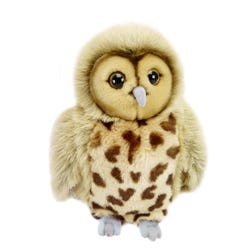 Full Bodied Owl