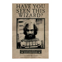 Harry Potter Wanted Sirius Black Maxi Poster