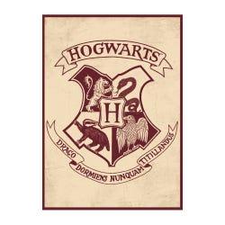 Harry Potter Hogwarts Crest Metal Magnet