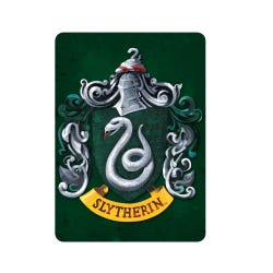 Harry Potter Slytherin Metal Magnet