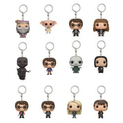 Pocket POP Harry Potter Keyring Assortment