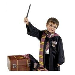 Harry Potter Trunk Boys Costume