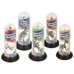 Magnoidz 3D Dinosaur Skeletons