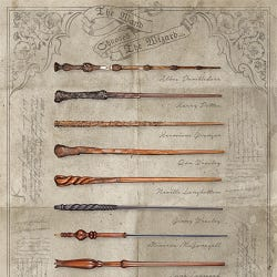 Harry Potter The Wand Chooses the Wizard Maxi Poster