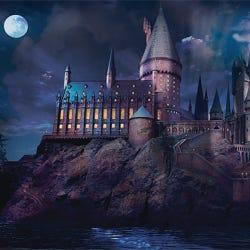 Harry Potter Hogwarts Castle Maxi Poster