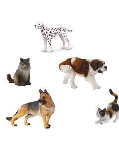 Hamleys Cats & Dogs Box Set 5Pcs