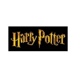 Harry Potter: Quidditch Robe XS
