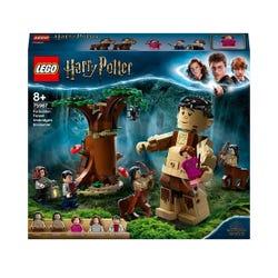 LEGO Harry Potter Forbidden Forest Umbridge's Act Set 75967