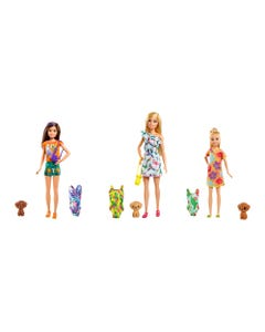 Barbie Dreamhouse Adventures- Sisters and Pet/Accy Assortment